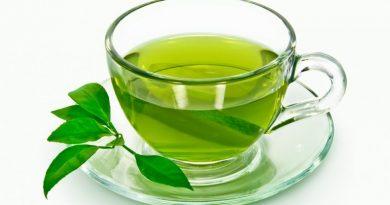 Green Tea in A Pill: A Stunning Obesity Counter?